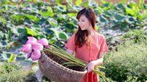 Liên Khúc Nhạc Miền Tây Nhạc Dân Ca Trữ Tình Quê Hương – Dương Hồng Loan – Sao Út Nỡ Vội Lấy Chồng