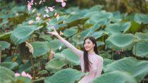 Liên khúc Nhạc Vàng Hải Ngoại Vang Bóng 1 Thời | Lưu Chí Vỹ ft Lưu Ánh Loan, Lê Như, Diễm Thùy, Quỳnh Trang