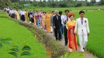 Liên Khúc Đám Cưới Như Mơ Nhạc Đám Cưới Cực Hay Quang Linh