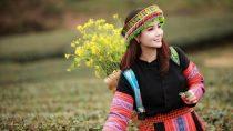 Nhạc Tây Bắc Mới Nhất | Liên Khúc Nhạc Núi Rừng Tây Bắc Hay Nhất