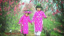 Hát chèo Quan Âm Thị Kính cổ Việt Nam trích đoạn việc chèo cổ Việt Nam đặc sắc nhất