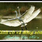 Khúc hát quê hương: Cánh cò và dòng sông