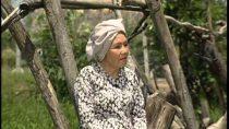Ca cổ về với mẹ NSUT Út Bạch Lan, Thoại Miêu, Kim Tiểu Long