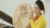 Liên Khúc Vân Từ Một Khúc Tình Ca Chèo Cổ Việt Nam Hay Nhất